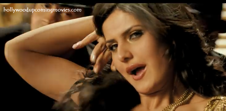 zarine khan hot picture